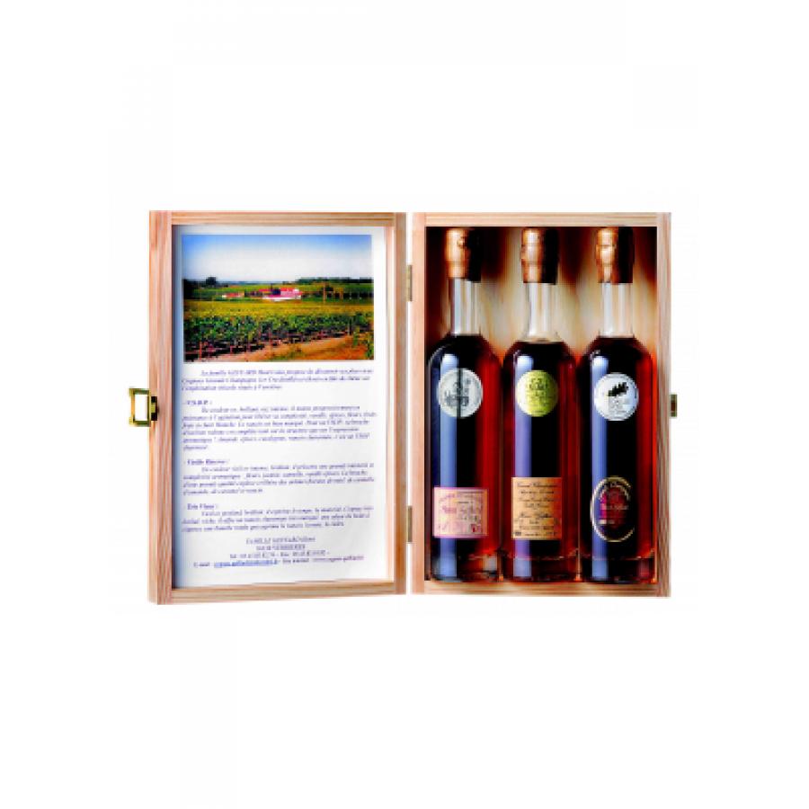 Geffard Henri Tasting Box Cognac 01