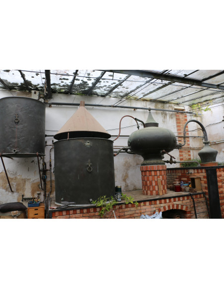 Alambic Charentais - Pot Still Guillard et fils 25hl 010