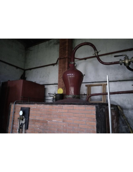 Alambic Pot Still Cognac - Chagnaud & Fils 18hl 05