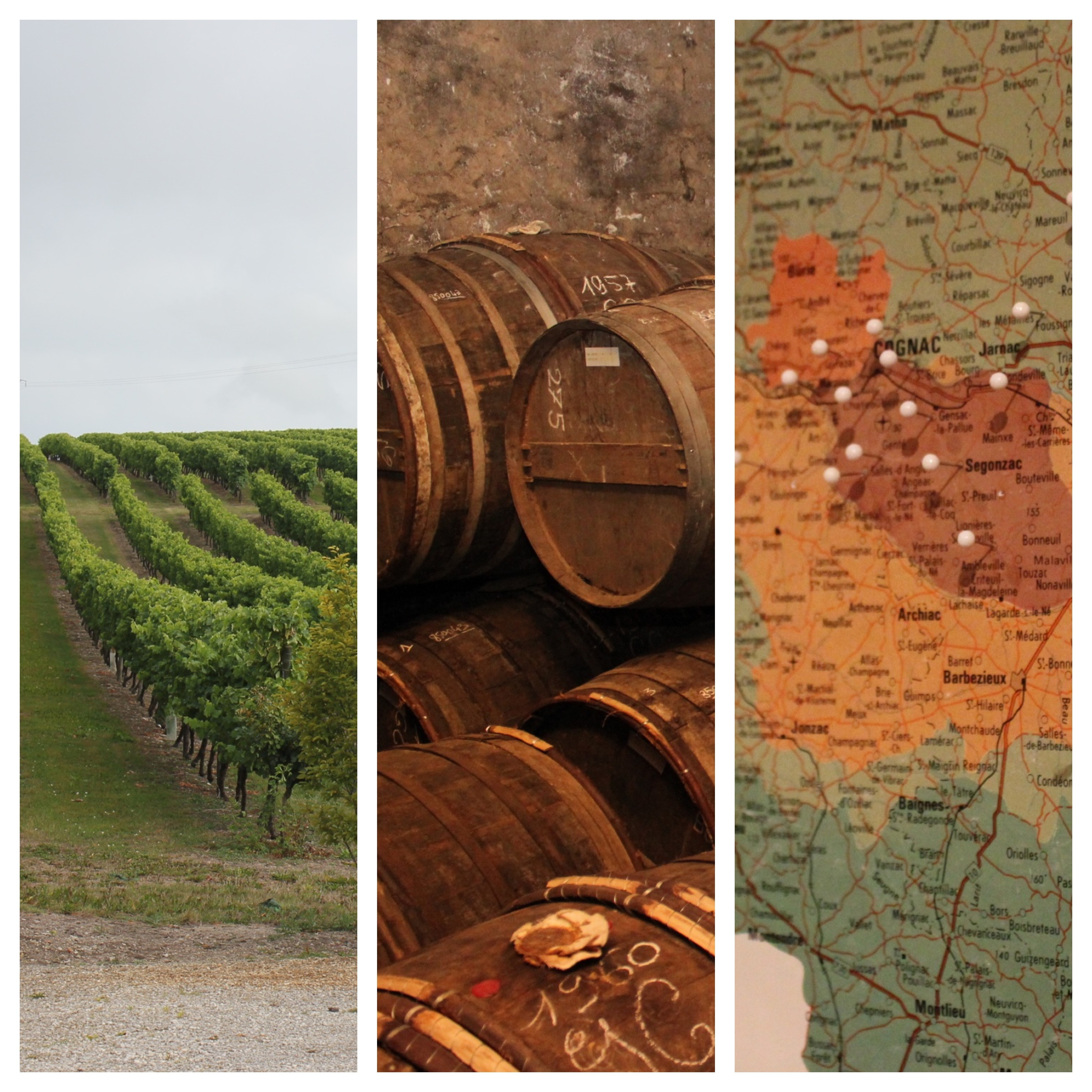 Tourism in Cognac Charente